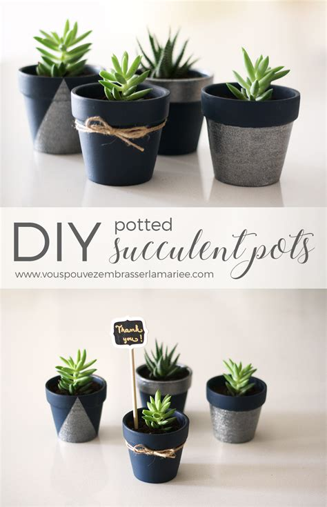 cute succulent pots i think i just found the perfect guest favor these