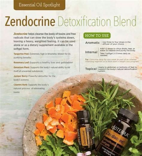 Detox Blend For Dogs by 31 Best Images About Essential Zendocrine Blend On