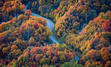 tennessee colors when is the best time to see smoky mountain fall colors
