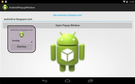 android popup layout android er popup window with dynamic content