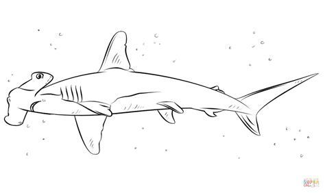 dibujo de tibur 243 n martillo para colorear dibujos para