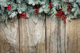 christmas tree branches christmas tree branches vector