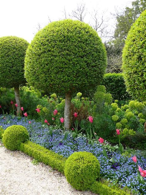 17 best images about giardini gardens on pinterest
