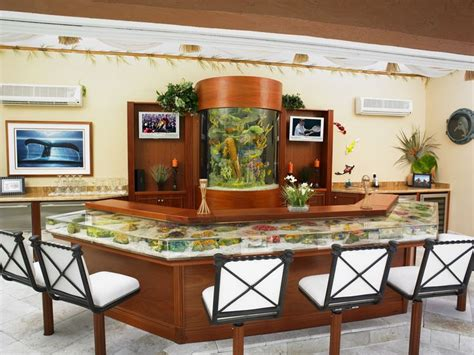 fish tank bar top bar top aquarium aquariofilia aquarium pinterest