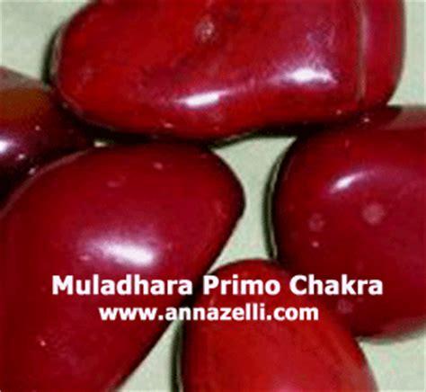 fiori di bach e chakra secondo chakra secondo chakra secondo chakra fiori di