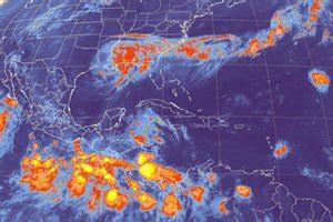 la tilapia se ha convertido en el quinto pescado ms consumido en los el universal kirk evoluciona a hurac 225 n en el atl 225 ntico