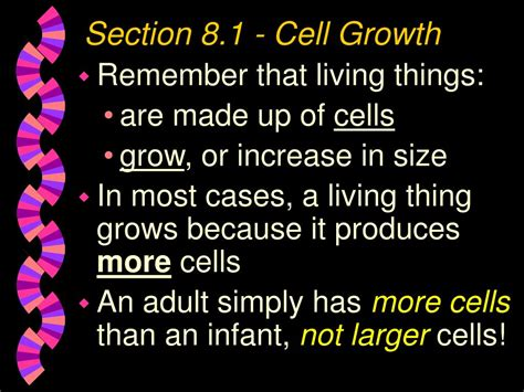 chapter 9 section 1 cellular growth ppt chapter 8 cell growth and division powerpoint