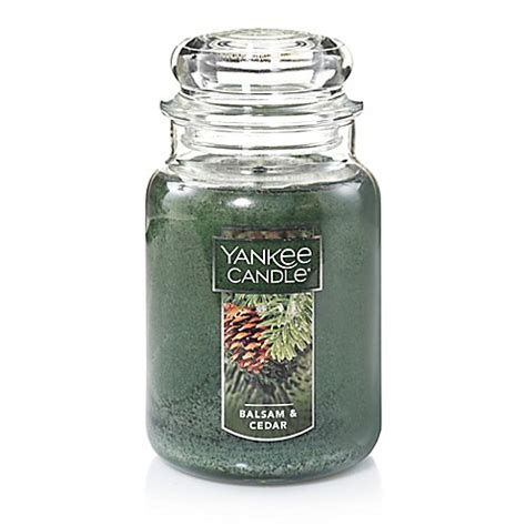 yankee candele yankee candle 174 housewarmer 174 balsam and cedar large candle