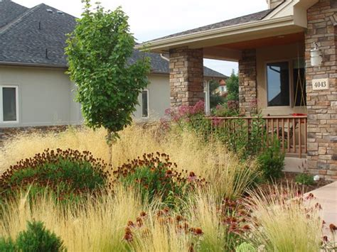 xeriscaped backyard design professional xeriscaping tips landscaping network