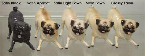 pugs colors 404 not found