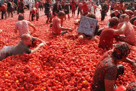 In Law Suite Plans by La Tomatina World S Biggest Food Fight Suitelife