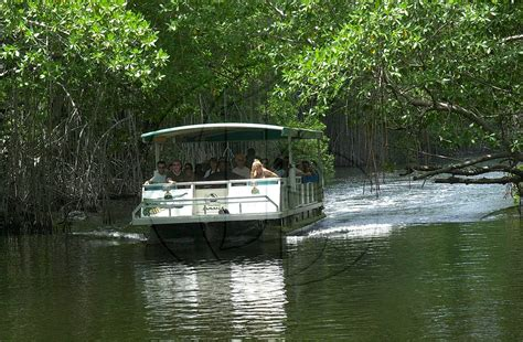 Awning Boat Onthegotoursjamaica Com 187 Black River Safari