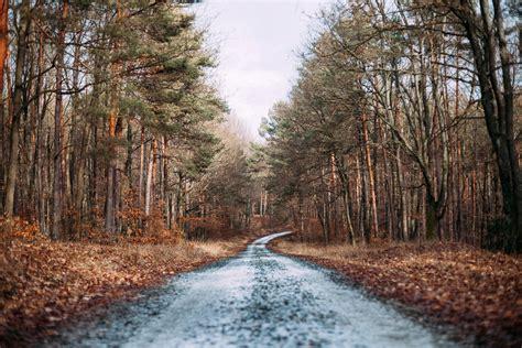 free photos beautiful landscape and road image free stock photo