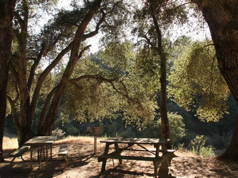 peaceful bogart park quick escape banning ca patch