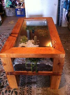 coffee table terrarium terrarium pinterest ps coffee and tables end table reptile cage great for small species pet
