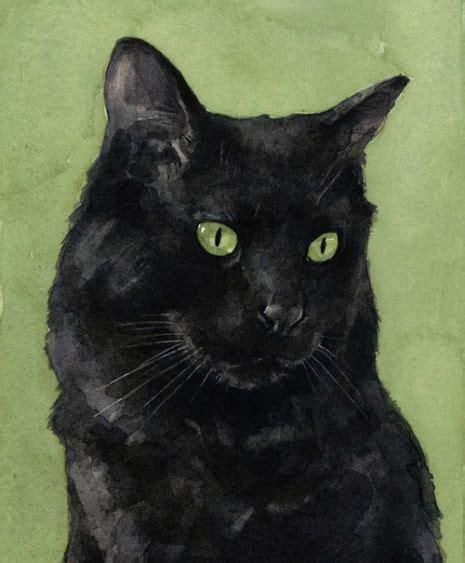 Peinture Tableau Noir 2882 by Les 14 Meilleures Images Du Tableau Aquarelles Chats Sur