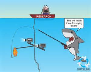 The fun of research shark cartoons by support our sharks