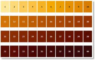brown color chart that which we call a the black ipa name debate