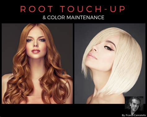 touch up hair color root touch up hair color maintenance dellaria salons