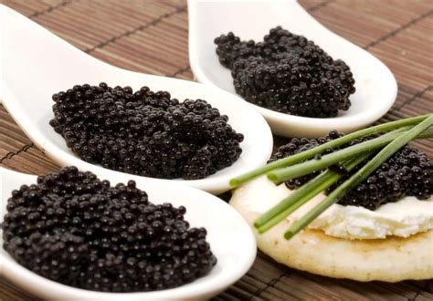 the best caviar caviar guide 10 carviar facts you should living