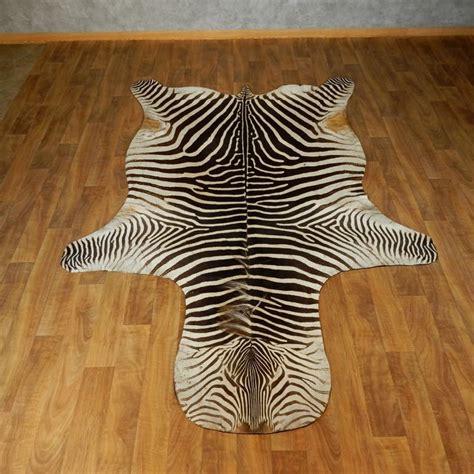 zebra rug for sale zebra shoulder mount for sale 17425 the taxidermy store