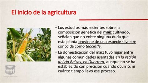 historia de m 233 xico 2500 a c 2021 d c timeline preceden agricultura en mexico c2 hm1 p2 s2 la agricultura