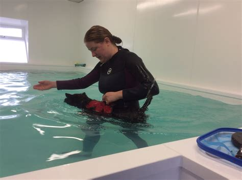Happi Days Hydrotherapy And Physiotherapy Martlesham