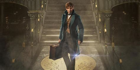 fantastic beasts and where fantastic beasts and where to find them new image details