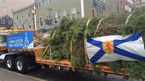 nova scotia arranges annual gift for the city of boston a