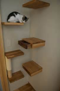 cat wall shelves climbing secret drawer ideas for hiding things in plain sight