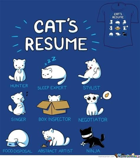 Resume 9gag by Cat Resume By Qwevictor Meme Center