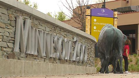 Minnesota Zoo Gift Card - best zoo exhibits in minnesota 171 wcco cbs minnesota