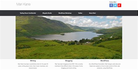 wordpress tutorial vantage using the vantage theme to your advantage