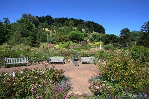 of california botanical garden of california botanical garden