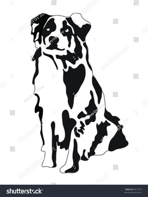 Email Address Finder Australia Australian Shepherd Vector Illustration 9877525