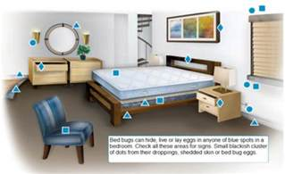 bed bugs information cover protect