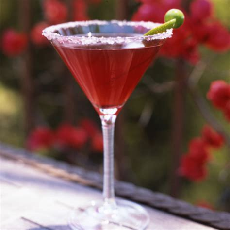 frozen pomegranate margarita pomegranate margaritas recipe govind armstrong food wine