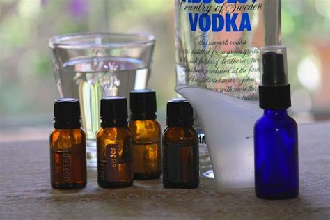 homemade vodka bed bug repellent spray great ideas bed bugs essential oils bed bugs bed