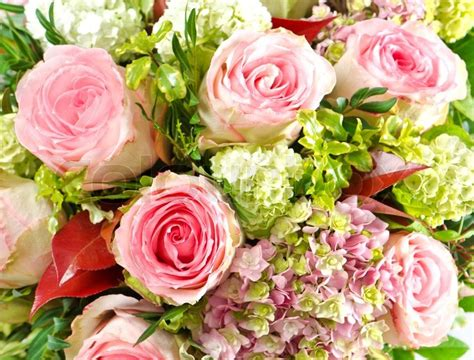 beautiful bouquet florist flower shop florist in pink roses beautiful flowers bouquet stock photo