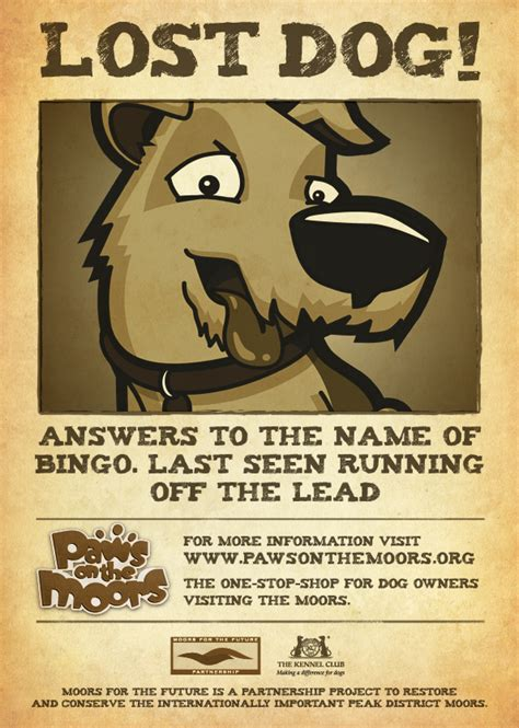 doc 598644 lost pet poster template 20 nice lost pet