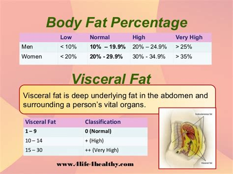 healthy fats range visceral ideal percentage search ultimate