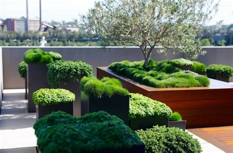 modern balcony planters create your own urban oasis with plants