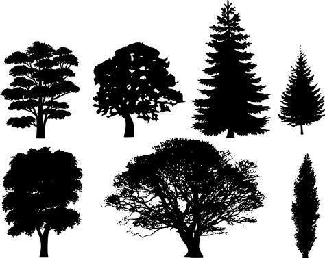 gambar vektor gratis hutan pohon ek pohon cemara gambar gratis di pixabay 31910
