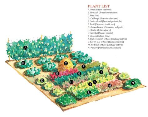 Large Scale Vegetable Garden Plan Gardening Canning Large Vegetable Garden Layout