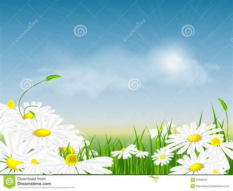 floral abstract summer template stock image image 32585931