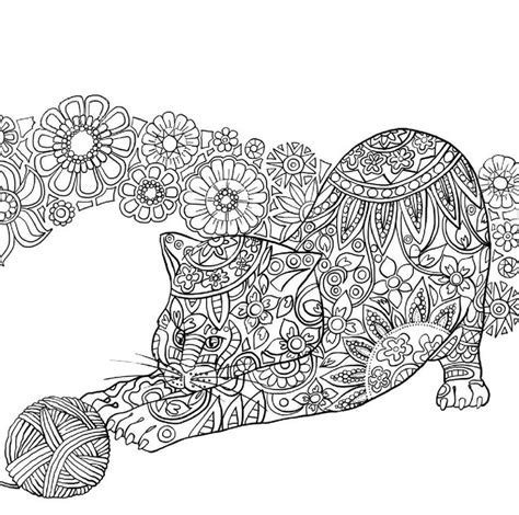 cat coloring pages for adults intended to invigorate to