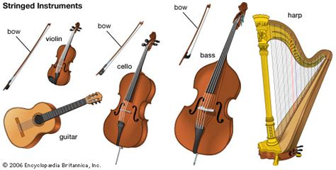 string section instruments musical instrument stringed instruments kids