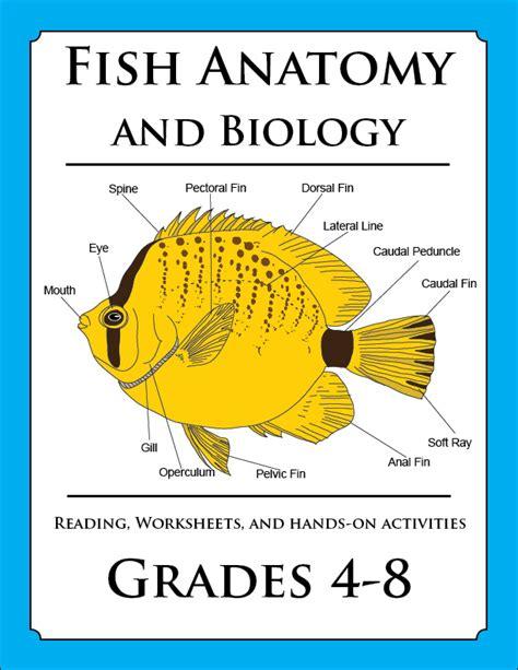 Fish Anatomy Worksheet