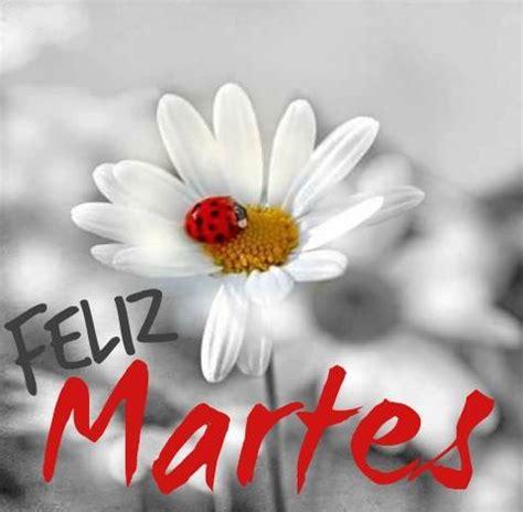 imagenes de buenos dias feliz martes feliz martes dias de la semana pinterest spanish