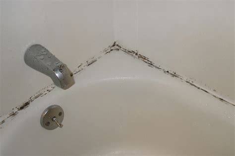 how to remove the mold in bathroom keeping mold out of your bathroom the fashionable housewife